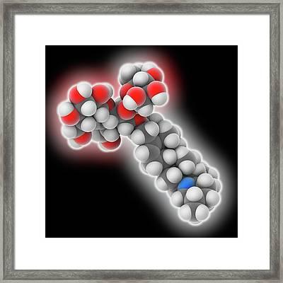 Solanine Poison Molecule Framed Print