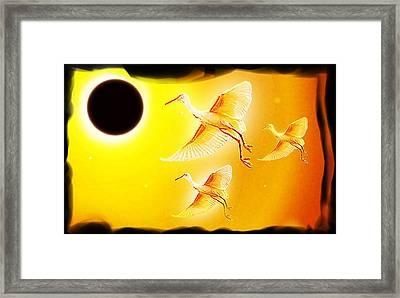 Solar  Eclipse Framed Print by Hartmut Jager