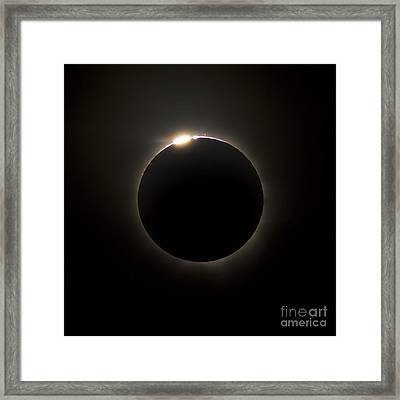 Solar Eclipse With Prominences Framed Print by Philip Hart