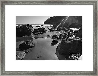 Muir Beach  Framed Print by Scott Cameron