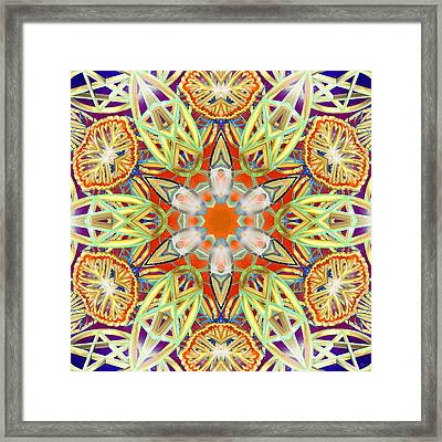 Solar Lattice Framed Print
