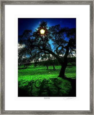 Solar-oak Eclipse Framed Print