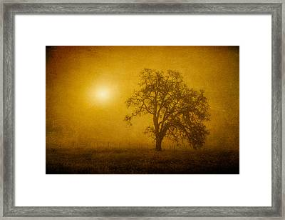 Solar Power Framed Print by Randy Wood