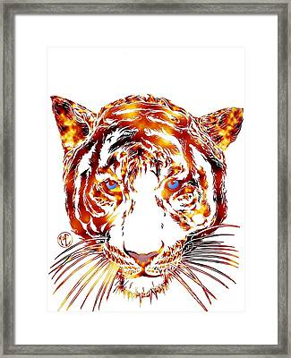Solar Tiger Framed Print by Justin Moore