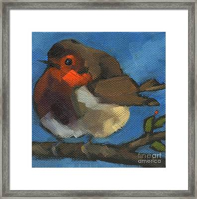 Sold - Rock'n Baby Robin Framed Print