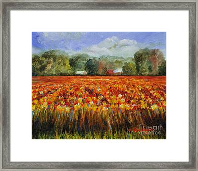 Solebury Autumn Framed Print by Cindy Roesinger