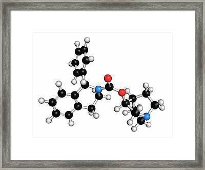 Solifenacin Overactive Bladder Drug Framed Print by Molekuul