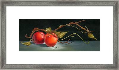 Solitary Apples Framed Print by Doreta Y Boyd