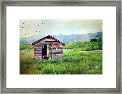 Solitary Cabin Framed Print by Sylvia Cook
