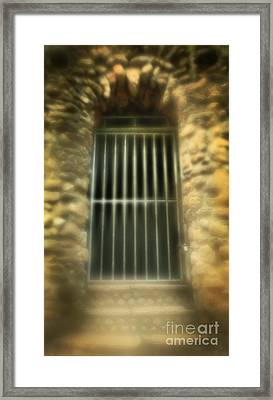 Solitary Confinement Framed Print by Inspired Nature Photography Fine Art Photography