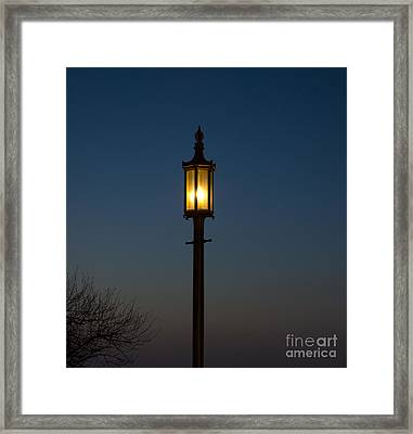 Solitary Gas Light Framed Print by Tim Mulina