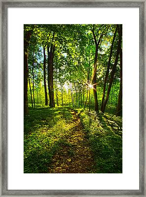 Solitary Journey Framed Print