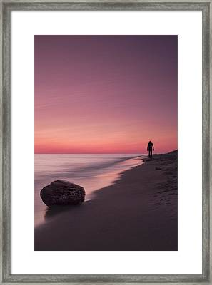 Solitary Stroll Framed Print by Andrew Soundarajan