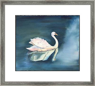 Solitary Swan Framed Print by Bonny Lundy