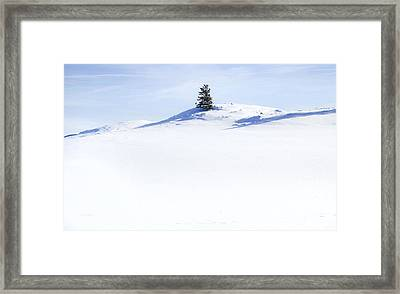 Solitary Framed Print by Theresa Tahara