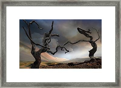 Solitary Together Framed Print by Igor Zenin