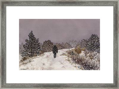 Solitude Framed Print by Anne Gifford