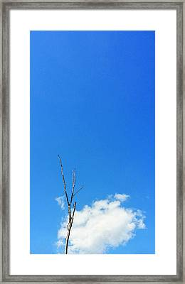 Solitude - Blue Sky Art By Sharon Cummings Framed Print by Sharon Cummings