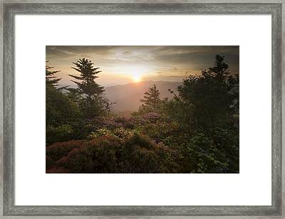 Solitude Framed Print by Doug McPherson