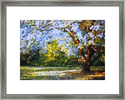Solitude Garden Framed Print by Georgiana Romanovna