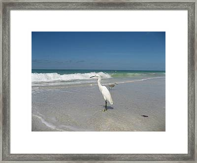 Solitude Framed Print by Jean Marie Maggi