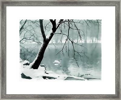 Solitude Framed Print by Jessica Jenney