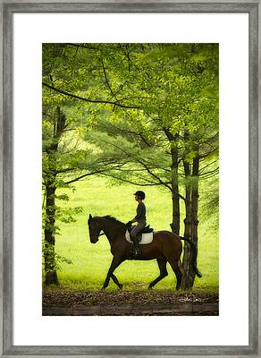 Framed Print featuring the photograph Solitude by Joan Davis