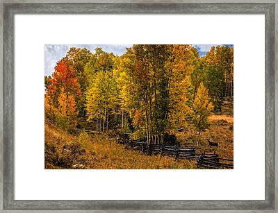 Framed Print featuring the photograph Solitude by Ken Smith