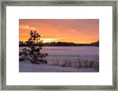 Solitude Lake Horicon New Jersey Framed Print by Terry DeLuco
