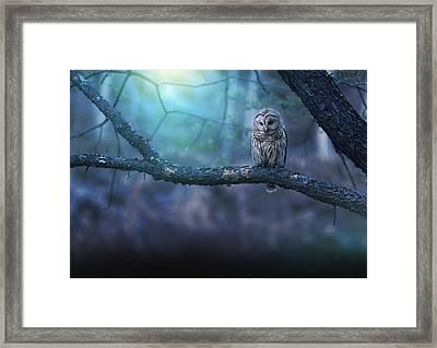 Solitude - Landscape Framed Print
