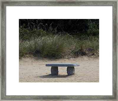 Solitude Framed Print by Michael Friedman