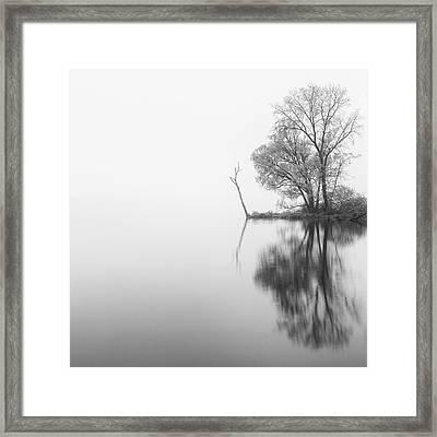 Solitude Framed Print by Michele Steffey