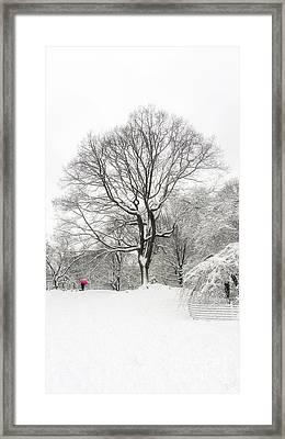 Solitude Framed Print by Nishanth Gopinathan