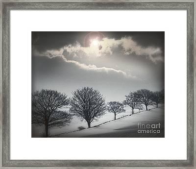 Solitude Of Coldness Framed Print