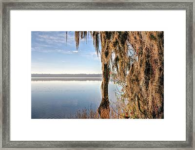 Solitude On Lake Jackson  Framed Print