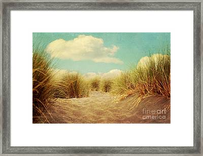 Solitude Framed Print by Sylvia Cook