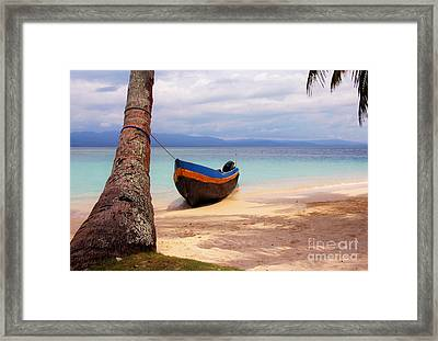 Solo Framed Print by Bob Hislop