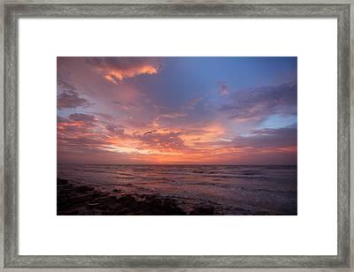 Solo Flight At Dawn Framed Print