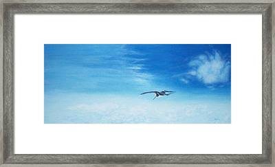 Solo Flight Framed Print by Mike Durco