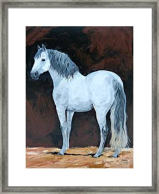 Solo  Means Alone Framed Print by Janina  Suuronen