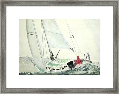 Solo Framed Print by Stan Tenney