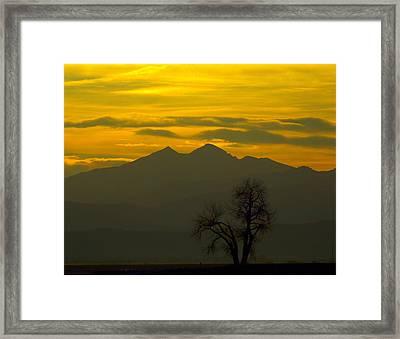 Solo Tree With Longs Peak Framed Print by Rebecca Adams