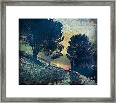 Somber Passage Framed Print