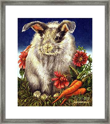 Some Bunny Is A Fuzzy Wuzzy Framed Print by Linda Simon