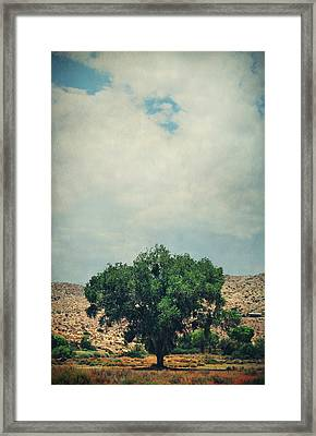 Some Days I Believe Framed Print by Laurie Search
