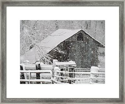 Some Shelter Framed Print