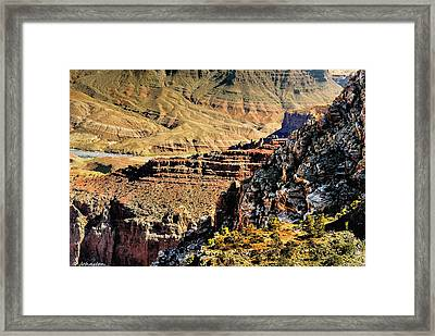 Some Views From Moran Point -  Grand Canyon Framed Print by Bob and Nadine Johnston