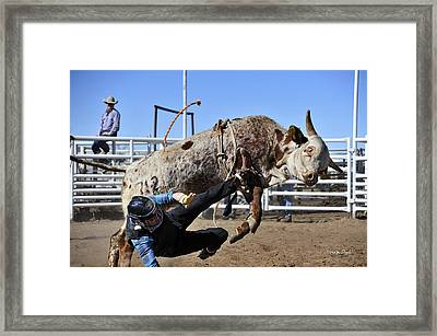 Some You Win Some You Lose Framed Print by Karen Slagle