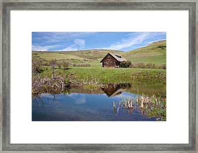 Framed Print featuring the photograph Somebody's Dream by Jack Bell