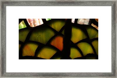 Something Different Framed Print by Gayle Price Thomas